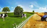 İş Bankası Tarım ve Hayvancılık Kredileri
